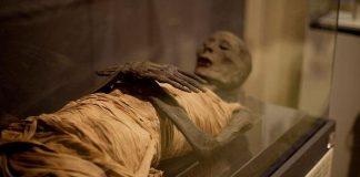mummy university of cambridge