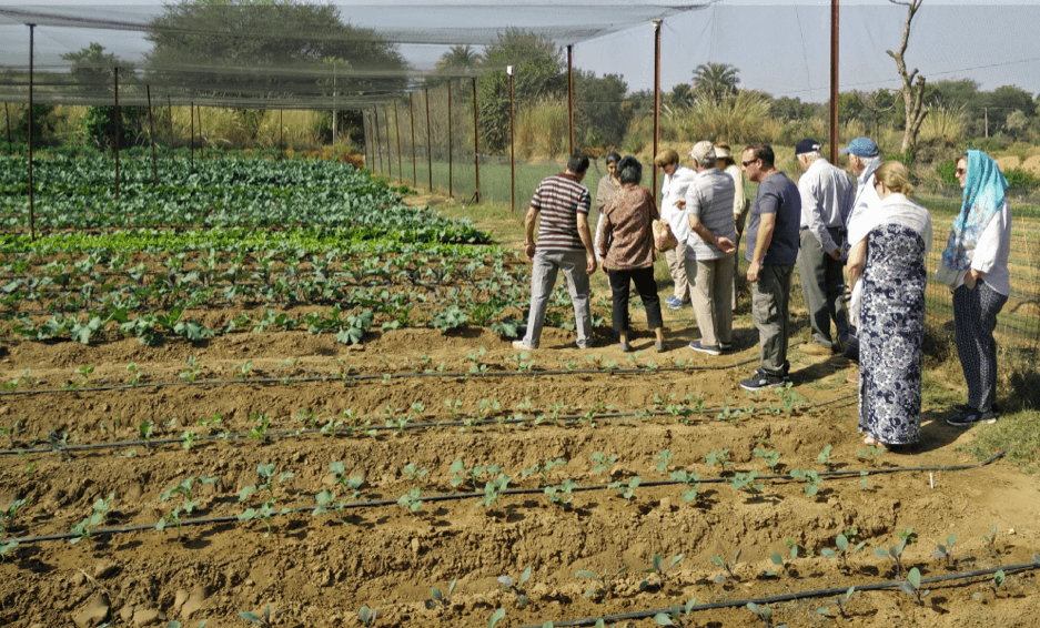 organic farm, ramgarh lodge, jaipur